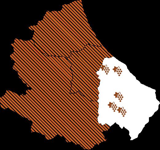 Infografica Tenute nella provincia di Chieti